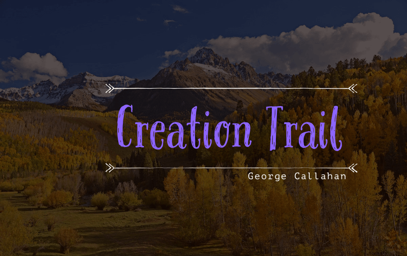 Creation Trail Running Blog Post