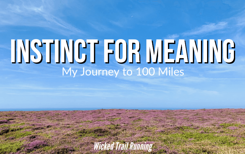 Instinct For Meaning my journey to 100 miles